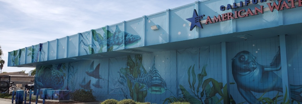 New Mural on California American Water Building Aids Transformation of Imperial Beach