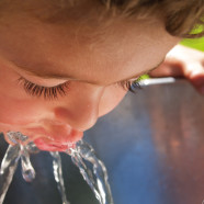 CWA Joins Other Water Retailers with Constructive Suggestions on Status of Drinking Water Program