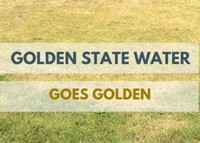 GoldenStateWater-GoesGolden