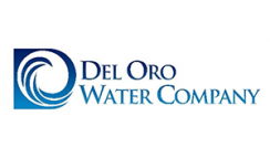 delorowatercompany-featured